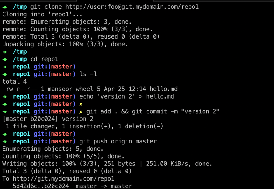 Setting up a Git HTTP server with Nginx