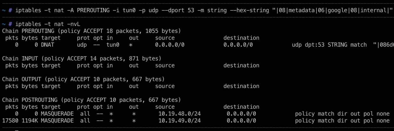 Blocking specific DNS queries in a VPN using iptables